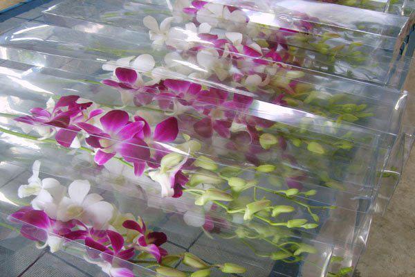 Букеты цветов при транспортировке могут повредиться, если не соблюдать правила перевозки.