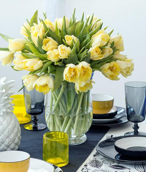 Флористический салон «Парижанка» может предложить как популярные, так и экзотические растения, кустовые розы, суккуленты – посмотрите все виды цветов в каталоге.