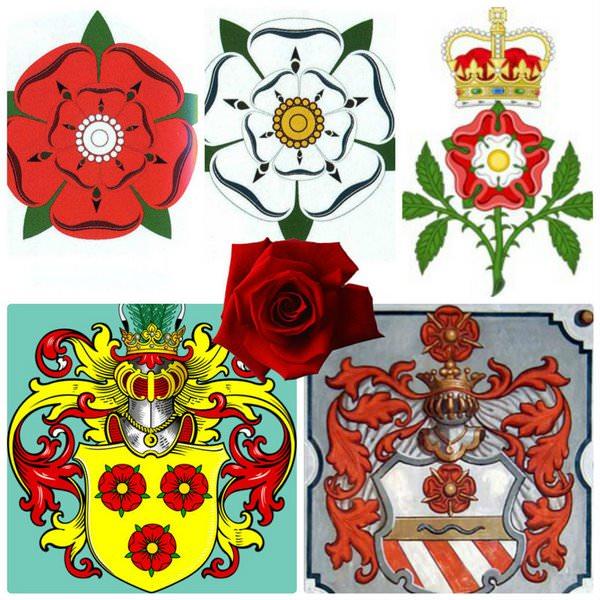 Геральдические розы на гербах английских рыцарей